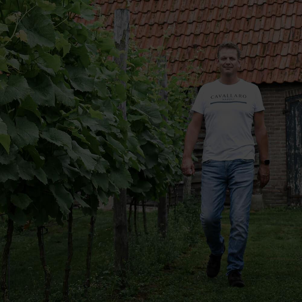 Wijnproeverij Chateau splo